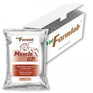 Muscle Up 480 g - 16 g x 30 sasz. - Vetfarmlab